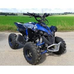 Quad RENEGADE 110cc AUTO
