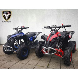 Quad RENEGADE 49cc 6""